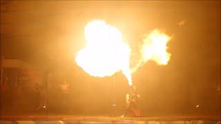 Огненное лазерное шоу. Новосибирск. Центральный парк. https://cobrashow.ru/