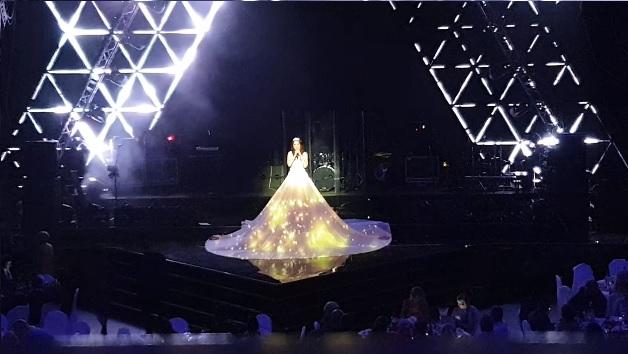 Маппинг на платье https://cobrashow.ru/